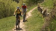 Mountain bikers in South Tyrol