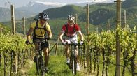Mountain bike tours for all levels of difficulty.