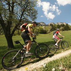 Start from our hotel and take your mountain bike into the green fields and woods