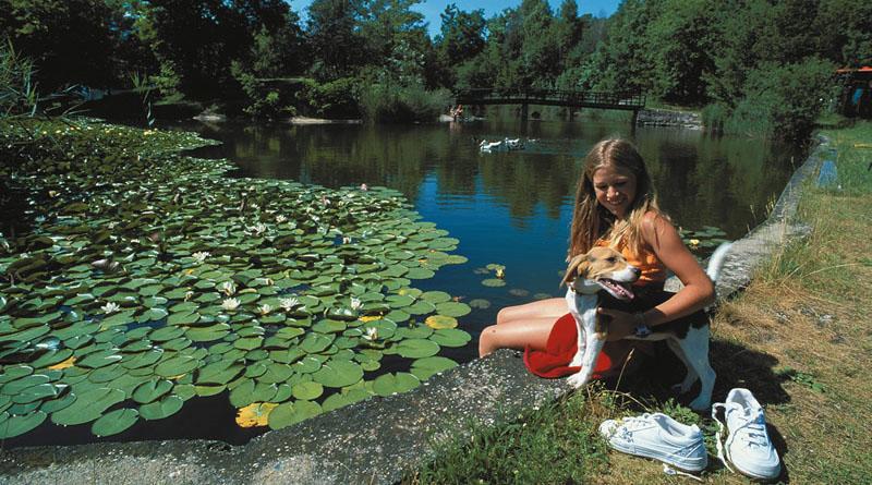 Vacanze estive in montagna relax nel parco dell 39 hotel tenz for Laghetto naturale