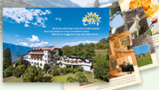 Download Hotel Tenz's brochure 2019